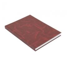 Амбарная книга в клетку А4, твердая обложка (192 л)